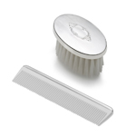 Empire Silver Oval Shape Shield Design Brush and Comb Set