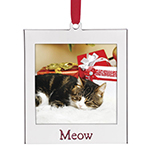 Cat Photo Ornament - Lenox Ornament