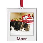 Cat Photo Ornament - Lenox Ornament